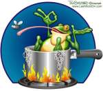 frog-in-boiling-water-photo-by-tim-sheppard