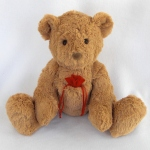 Teddy_Bear_Pocket