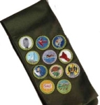 Boy Scout sash-small